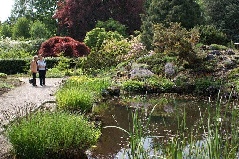 Botanischer Garten der Stadt Linz » Linz Tourismus